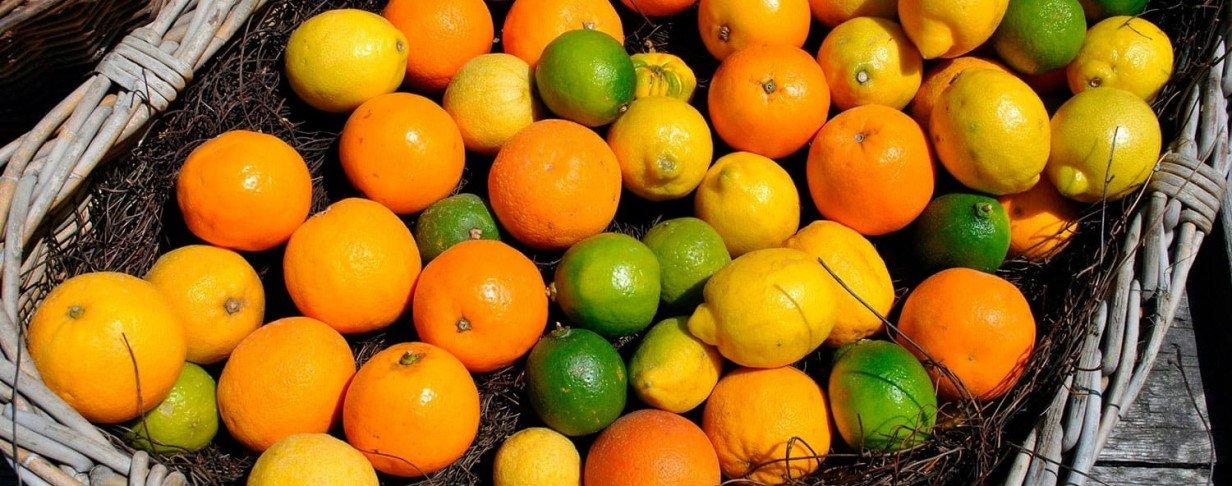Soluções para<strong>Citrus</strong>