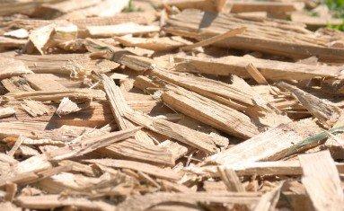 Cavaco de Madeira – A popstar das biomassas